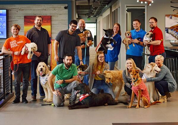 Blue Horseshoe's First Annual Bring Your Dog to Work Day 2019