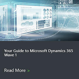 Microsoft D365 2021 Wave 1 Guides